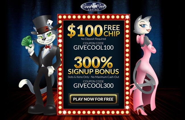 cool cat casino free spins bonus codes