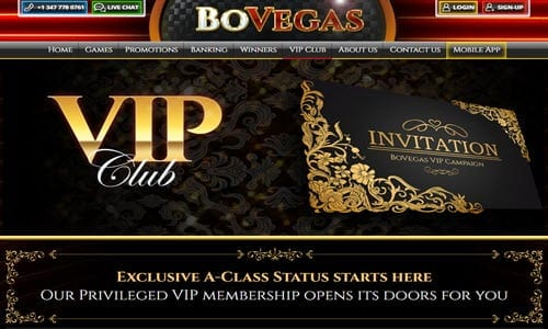 Bovegas Casino Vip Club
