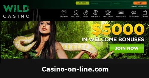 Bonus Code Wild Casino