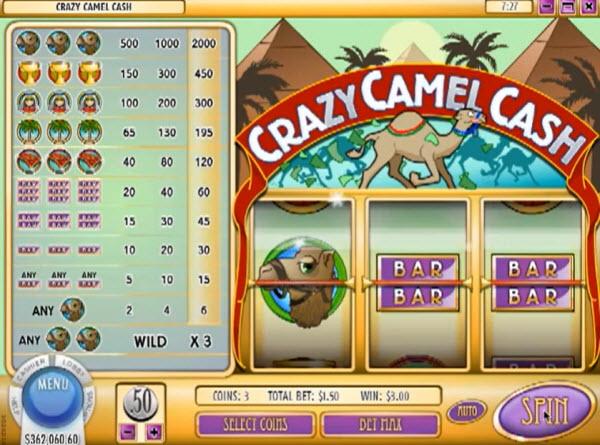 Crazy Camels Slot