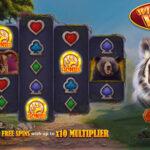 wilderness wins slot