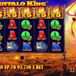 Buffalo King Slot